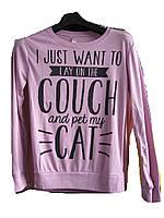"Свитшот женский (трикотаж) Couch cat фиолетовый Турция Розница ""Smile"" B-1053"