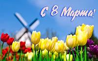 8 марта  международный женский жень