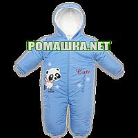 Детский весенний осенний комбинезон р. 62-68 для новорожденного из плащевки с махровой подкладкой 3473 Голубой