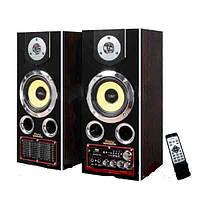 Акустическая система Ailiang USBFM-8100 CR 5''