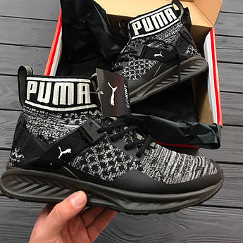 Мужские кроссовки PUMA IGNITE evoKNIT With Dave East