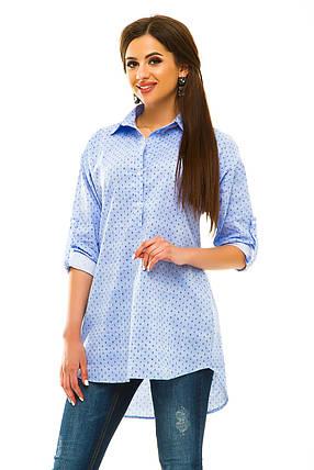 Рубашка голубая принт, фото 2