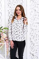 Стильная женская блуза Драйв Париж 3 Arizzo 44-52  размеры
