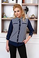Стильная весенняя блуза Челси 3 Arizzo 44-50  размеры