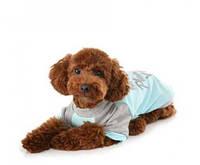 Футболка Puppy Angel PA-TS210 All For You My Angel для собак, фото 1