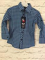 Рубашка синяя клетка на кнопке 2-7 лет