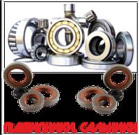Ремень11-10-1250 POWERCLASSIC