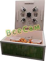 Инкубатор механический «Курочка Ряба» ИБ-130 с вентилятором