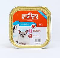 Паштет Клуб 4 лапы для кошек с лососем, 100 г