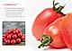 Семена Томата Солероссо F1 1000 семян Nunhems  (Нуменс), фото 3