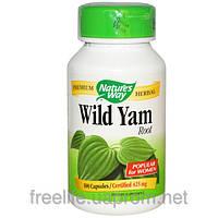 Дикий Ямс, Nature's Way, Wild Yam, Root, 425 мг, 100 капсул