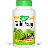 Корень дикого ямса, 425 мг, 180 капсул, Wild Yam Root, Nature's Way