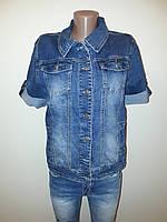 Джинсовый пиджак женский большие размеры 305