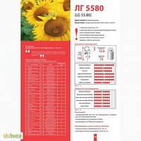 Семена подсолнечника Лимагрейн ЛГ 5580