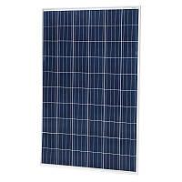 Фотоэлектрический модуль ABi-Solar P60260-D, 260 Wp, Poly 4bb
