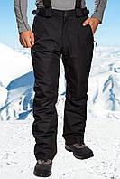 Брюки горнолыжные мужские Freever 3505