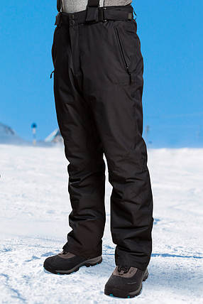 Брюки горнолыжные мужские Freever 3505, фото 2