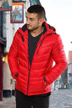 Куртка мужская Freever 6213, фото 2