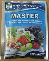 Мастер удобрение для ягодных культур, 100г.