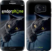 """Чехол на Samsung Galaxy S7 Edge G935F Дымчатый кот """"825u-257"""""""