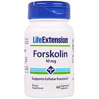 Форсколин Life Extension, 10 мг, 60 капсул. Сделано в США.