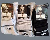 Шкарпетки жіночі. Спортивні асорті від білого до чорного