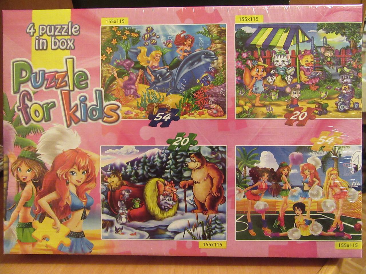 Пазлы 54/20 элементов 4 в 1 Danko toys