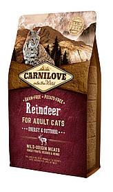 Полнорационный беззерновой корм CarniLove Raindeer для взрослых кошек, 2 кг