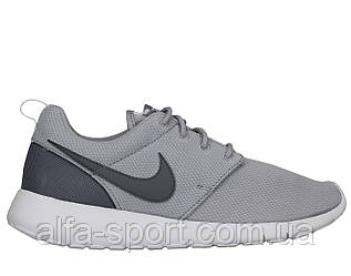 Кроссовки Nike Roshe One (GS) (599728-028)