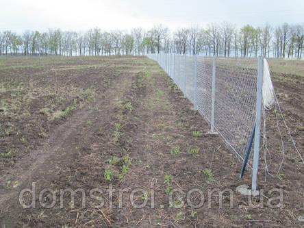 Забор из сетки рабица, фото 2