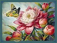 """Набір для вишивання бісером картина """"Метелик на півонії"""" 30*40см"""