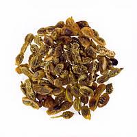 Софора японская плоды сушеные фасовка 100 грамм