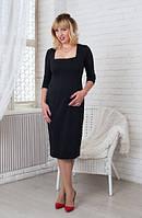Женское платье Софи  классическое, деловое, модное  размер  44, 46, 48, 50, 52, 54, 56  черое