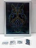 Алмазная живопись, Совы в сердце (DAR-01-03), фото 7