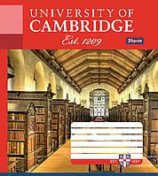 """Тетрадь 12 клетка """"1 Вересня"""" Кембридж библиотека"""