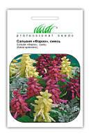 """Купить семена цветов Сальвия Фарао, смесь 0.1 г  ТМ """"Нем Zaden """"(Голландия)"""