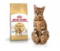 Royal Canin BENGAL ADULT Сухой корм для взрослых бенгальских кошек старше 12 месяцев, 400г