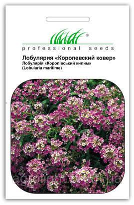 """Купить семена цветов Алиссум (Лобулярия) Королевский ковер, смесь 0.1 г  ТМ """"Нем Zaden """"(Голландия)"""