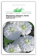 """Купить семена цветов Маргаритка Помпон, белая 0.01 г  ТМ """"Нем Zaden """"(Голландия)"""