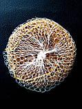 Мочалка натуральная  из травы Ветивер, фото 2