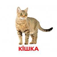 Карточки Домана. Украинский язык. Вундеркинд с пеленок. Домашние животные