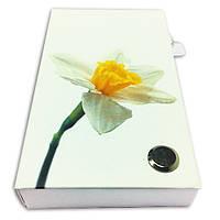 Набор из стикеров и закладок PET NotesMark «Нарцисс»
