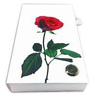 Набор из стикеров и закладок PET NotesMark «Роза», фото 1