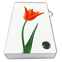 Набір стікерів і закладок PET NotesMark «Тюльпан», фото 1
