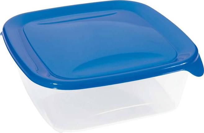 Емкость Fresh&Go 1,7 л квадратная голубая, Curver (Польша), фото 2