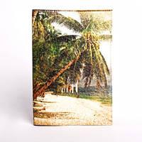 Оригинальная обложка на паспорт Пальма