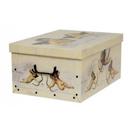 Коробка Angeli Crema Maxi 51*37*24 см, Miss Space 7010, фото 2