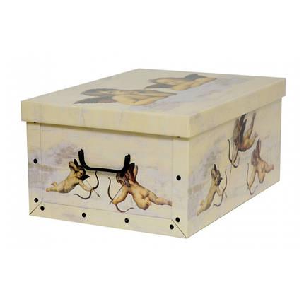 Коробка Angeli Crema Midi 37*30*16 см, Miss Space 7410, фото 2