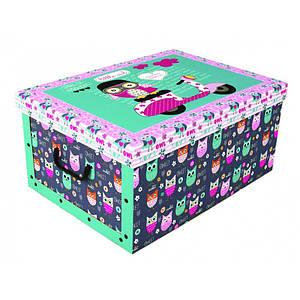 Коробка Daredevil Owls  Maxi 51*37*24 см, Miss Space 7066