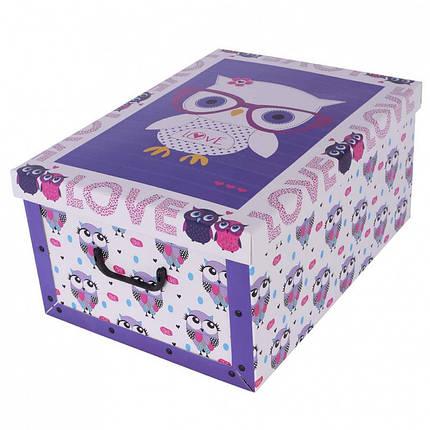 Коробок Cute Owls Maxi 51*37*24 см, Miss Space 7065, фото 2